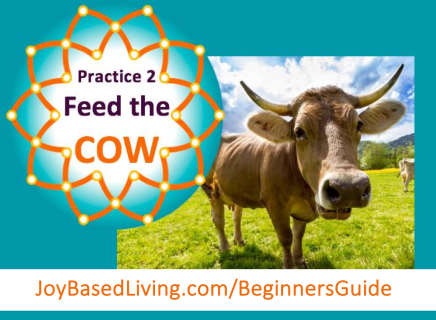 feed-the-cow-joy-based-living-beginners-guide-practice-2-blog-post