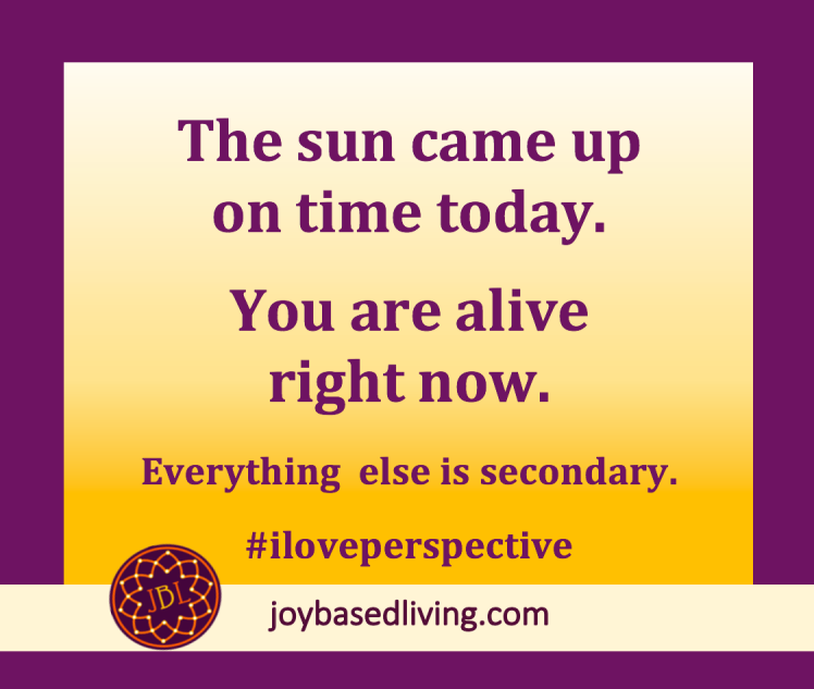 Perspective at Joy-Based Living