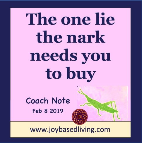 The one lie the nark needs you to buy