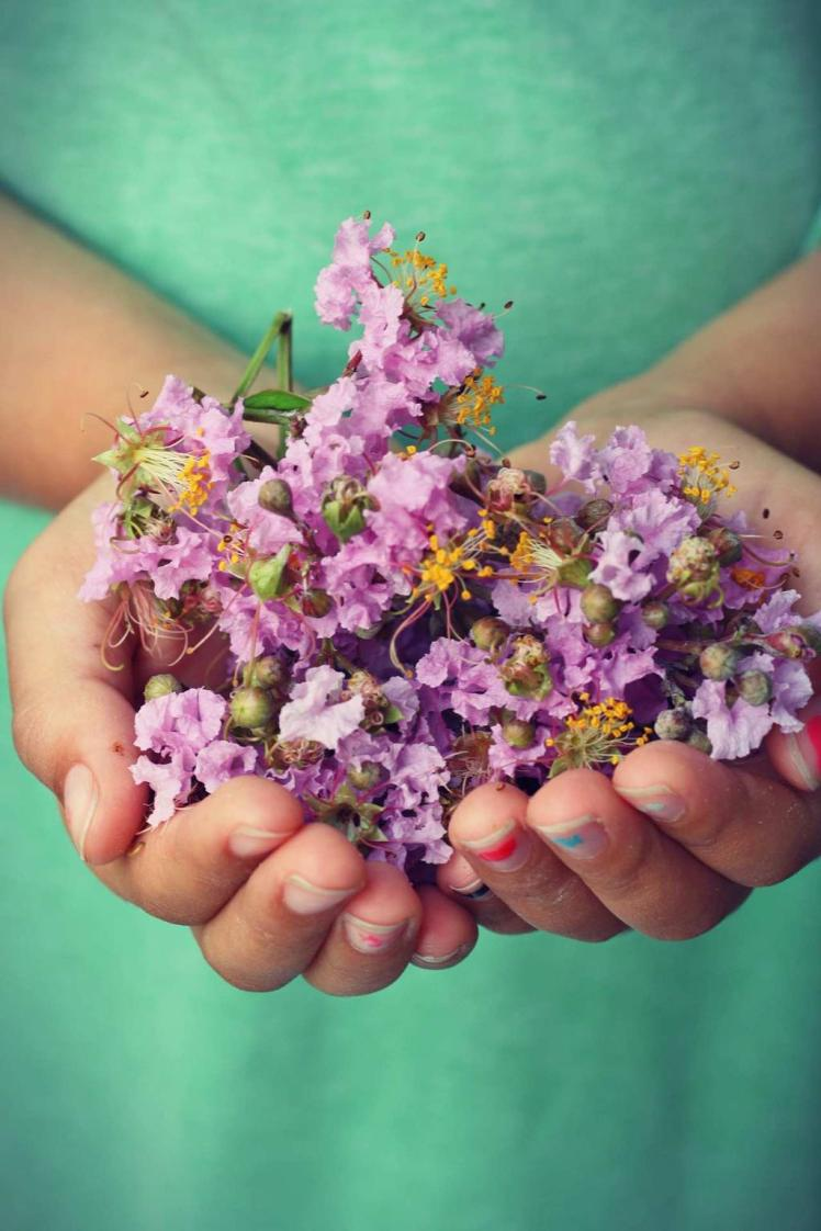 hands giving springtime flowers